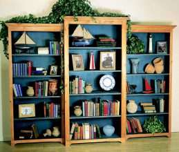 Library Bookcase – Center